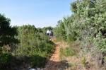 Mes marches avec l'AVF en 2012 dans FRANCE l'Uzège avf-premiere-marche-005-150x99