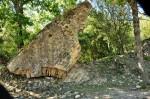 Pont du Gard et Roupt (14)